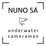 Nuno Sá